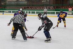 Snoopy 2017 - Game 1 - White Trash V Rusty Kings-29 (www.bazpics.com) Tags: snoopy international ice hockey tournament 2017 santa rosa california mountain view white trash rusty kings 40b division group team sport play player playing adult ca usa america game 1 one arena