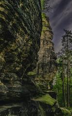 Pfaffenstein -- Neben dem Weg nach oben (JeanM.DD) Tags: bäume baum deutschland elbsandsteingebirge felsen germany himmel pfaffenstein rock sächsischeschweiz sachsensaxony sandstein sandsteinfelsen saxonyswiss sky sonnenuntergang sunset wanderung