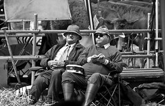 We might win this. (Neil. Moralee) Tags: middevonshow2017neilmoralee neilmoralee farm farmer man men sitting agriculture farming cattle beef livestock competition judges hat hats cow breeder pen stall wellington boots muck money chocolate sweets black white mono bw bandw blackandwhite monochrome neil moralee nikon d7200 dedon mid show tiverton knights heyes knightsheyes old mature dayout