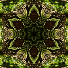 Kaleido Abstract 1660 (Lostash) Tags: art nature edited abstract pattern symmetry shapes kaleidoscopes