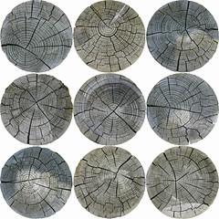 Just wood-1 (niekeblos) Tags: bewerking bomen boomdoorsnede cirkel compositie hout materiaal natuur vorm wood circle circles composition nature tree trees treetrunk treetrunks