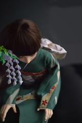 BJD Empress Akashi Wisteria (4) 1:4 size doll (Bright Wish Kanzashi) Tags: tsumami zaiku kanzashi silk dyed handmade tsumamizaiku tsumamikanzashi japanesetechnique flowers handdyed bespoke hanatsukuri цумами канзаши 簪子 instaart supportartists 手作り customorderswelcome etsyseller hairpin オーダーメイド 手染め ハンドメイド 伝統工芸 つまみ細工 簪 コーム ヘアアクセサリー brightwishkanzashi wisteria fuji purple bjd doll hairaccessory dollaccessory souldoll souldollkid 14size 球体関節人形