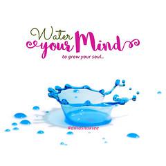 Water your Mind (DillaSyadila) Tags: dillashaklee shakleebydilla shaklee ireachfamily quotes islamicquotes vitamin supplement