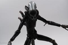 _DSC1009 (ZeroToyz) Tags: alien thedrone エイリアン revoltech 山口式 海洋堂 海洋堂山口式
