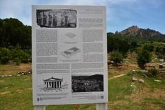 The Temple of Artemis.  Salihli/Turkey (Feridun F. Alkaya) Tags: sardis templeofartemis roman turkey temple ancient archaeological archaeology archeology greek historical historic history hellenistic byzantine ngc zeus sart lydia