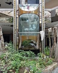 Elevator of the future and the past. www.placesthatwere.com #abandoned #elevator #abandonedbuildings #rustbelt #akron #ohio #urbex #urbanexploration #abandonedplaces #creepy #eerie #deadmall #rollingacres #overgrown #abandonedbeauty #abandonedmall #rollin (placesthatwere) Tags: abandoned urbanexploration ghosttowns urbex rurex abandonedplaces forgottenplaces urbandecay decay beautifuldecay