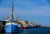 EUO © OCEANA Juan Cuetos 20170720_Northern Denmark _2702