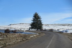Road curving into snow fields, Middle Atlas near Azrou, Morocco (Paul McClure DC) Tags: middleatlas morocco jan2017 almaghrib ifrane azrou mountains winter scenery snow northafrica