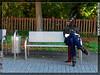 Joy of Sunfire - Set 11 - Citypony 1090710 25p (joyofsunfire) Tags: ponyplay petplay ponygirl petgirl humanpony joyofsunfire joy sunfire set11 citypony osterholzscharmbeck outdoor public city fetish fetishmodel latex latexmask latexhooves latexmodel lycra spandex skintight ponyboots hoofboots