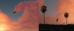 Bliss | GTAV (Razed-) Tags: bliss sunset cloudy palm trees los angeles grand theft auto v rockstar games naturalvision remastered graphics mod pc gaming