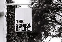 .the school of life. (Camila Guerreiro) Tags: film helios44 pentaxmesuper ilford bw camilaguerreiro são paulo brazil ilfordpan100 helios442 analog grain