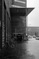 Rainy day, Amersfoort, the Netherlands (Hans Westerink) Tags: amersfoort utrecht nederland nl rain black white monochrome canon 6d hanswesterink