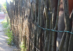 hand made fence (Hayashina) Tags: colombia islagrande fence wood wires hff