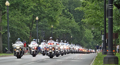 Rolling Thunder '17 -- 17 (Bullneck) Tags: nationalmall rollingthunder washingtondc spring americana federalcity cops police heroes uniform macho toughguy biglug bullgoons motorcops motorcyclecops motorcyclepolice motorcycle harley boots breeches uspp usparkpolice mpd mpdc dcpolice metropolitanpolicedepartment