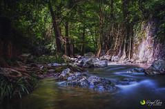 Rio de San Juan Bautista (Rogel Luna) Tags: rio cascadas paisaje naturaleza