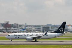 "Itami Airport 2017.7.19 (2) JA51AN / ANA's B737-800 with ""STAR ALLIANCE"" logo (double-h) Tags: omd em1markii omdem1markii lumixgxvariopz45175mmf4056asphpowerois rjoo itm osakaairport itamiairport 大阪空港 伊丹空港 airplane 飛行機 伊丹スカイパーク itamiskypark ja51an ana 全日空 b737 b737800 staralliance スターアライアンス specialpainting 特別塗装"