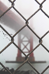 Summer in San Francisco (katiegodowski_photography) Tags: sanfrancisco canon california amateurs amateur fence perspective outdoors outside foggt summer summers capture cameras macro world flickr flickrcentral explore travel cali city bridges bridge fortpoint