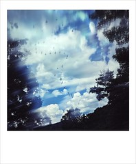 Ghosts (jeanne.marie.) Tags: blackandwhiteandblue blur iphone7plus iphoneography silhouettes trees sky summer clouds ghosts birds mountains onepieceofsky