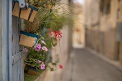 Callejuelas de Avignon (Nathalie Le Bris) Tags: bokeh avignon festivaldavignon street calle rue