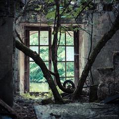 On dirait le Sud (Alexandre DAGAN) Tags: urbex urban exploration caste chateau abandonné abandoned decay ruines fenetre window vert green panasoniclx100 panasonic lx100 dmclx100 carré square squared cuadro couleur color colour france
