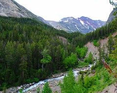 creek below (ekelly80) Tags: montana glaciernationalpark nationalparkservice nps june2017 roadtrip keisgoesusa optoutside findyourpark mountains rockymountains hike trail crackerlaketrail manyglacier view scenery creek water valley below rocks lookdown