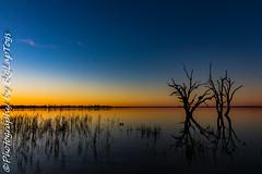 IMG_5454 (biglaptogs) Tags: barmera lakebonney riverland sa states sunsetsunrise