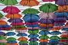 _MG_5961 (Marlon Cocqueel) Tags: lens parapluie umbrela