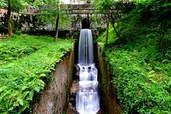 DSCF4156 (manomesa) Tags: hermita asturias agua verde fujixpro1 fujinon 16 f14