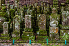 Moss covered tomb stones - Okunoin cemetery of Koyasan, Japan (Phil Marion) Tags: philmarion travel beautiful cosplay candid beach woman girl boy teen 裸 schlampe 懒妇 나체상 फूहड़ 벌거 벗은 desnudo chubby fat nackt nu निर्वस्त्र 裸体 ヌード नग्न nudo ਨੰਗੀ голый khỏa جنسي 性感的 malibog セクシー 婚禮 hijab nijab burqa telanjang обнаженный عري nubile برهنه hot phat nude slim plump tranny cleavage sex slut nipples ass xxx boobs dick tits upskirt naked sexy bondage fuck piercing tattoo dominatrix fetish
