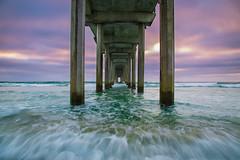 San Diego Love (PhotoJacko - Jackie Novak) Tags: scrippspier wave water sunset lajolla sandiego california surf beach pier ocean seascape canon6d jackienovakphotography