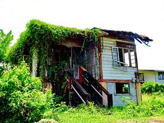 Abandoned (peggyhr) Tags: peggyhr house overgrown fallingapart dsc02579a tobago