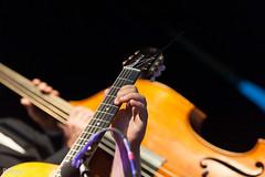 02_WintersteinTrio_5835 (darry@darryphotos.com) Tags: boulevarddujazz boulevarddujazz2017 d700 deuxsevres lesartsenboule melle melle79 nikon concert guitare jazz jazzmanouche musiciens musique scene wintersteintrio