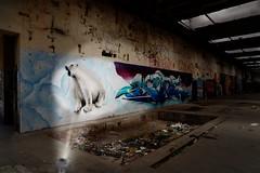 Kunstwerke beleuchten ... (smithjuha440) Tags: composing art wallpainting licht müll dunkel raum wand farbe grafitti