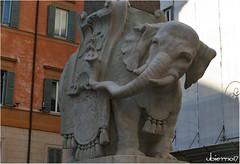 El Pulcino della Minerva (Ubierno) Tags: roma rome italia italy europa europe art arte elpulcinodellaminerva bernini barroco baroque minerva obelisco obelisk santamariasopraminerva ubierno