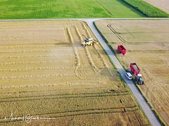 Erntezeit (michab100) Tags: michab100 mib mibfoto erntezeit mähdrescher schwäbischealb feld landwirtschaft traktor ernte harvest truck