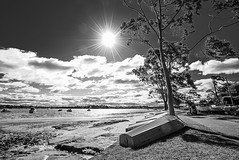 DSC01520 (Damir Govorcin Photography) Tags: boats sunburst trees water sky clouds canada bay sydney blackwhite monochrome zeiss 1635mm sony a7ii landscape