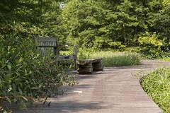 Wetland Trail at Shaw Nature Reserve (karenfletcher2) Tags: wetlandtrail boardwalk bench shawnaturereserve karenfletcher 07july