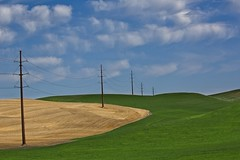 Power Lines in the Palouse (Alan Amati) Tags: amati alanamati america american usa us pacificnorthwest northwest nw wa washington palouse thepalouse power lines terrain topography field fields farm darms colfax steptoe sweeping curve landscaape rural country