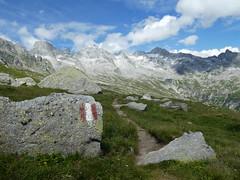 Sentiero Roma (Giuseppe.Allocca) Tags: sentieroroma sentiero roma checksum7c9afaa6ef810f1f312df39cebc1a0bf