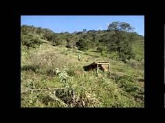 Downhill Cláudio Minas Gerais (portalminas) Tags: downhill cláudio minas gerais