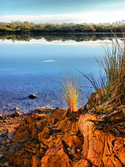 Winter hues by tidal creek VI (elphweb) Tags: fhdr falsehdr pseudohdr nsw australia coast coastal water ocean bay lake creek