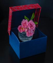Rose box (frankmh) Tags: flower rose box hittarp sweden indoor package