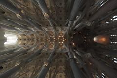 La Sagrada Familia (Dmitriy Sakharov) Tags: la sagrada familia spain espana architecture gaudi antonio antoniogaudiceilingpalauguell
