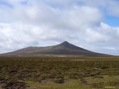 Islas Malvinas / Falkland Islands (georgina e.s) Tags: islasmalvinas falklandislands