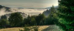 Blick vom Bärental über den Titisee (unter dem Nebel)