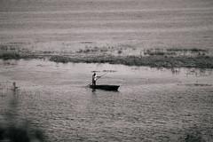 Mokoro drive (knipslog.de) Tags: mokoro fishing fish water okavango botswana botsuana safari adventure wildlife wild animals selfdrivesafari