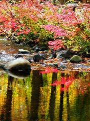 Pink Reflections (Stanley Zimny (Thank You for 24 Million views)) Tags: reflection fall autumn seasons pink water rocks