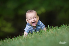 Happy Baby On the Move (Andrea Garza ~) Tags: grandkid grandson family i♥myfamily baby portrait children child laugh happy toddler scream screaming crawl crawling outdoor outdoors playing