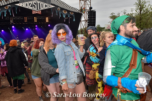 crowds for Professor Elemental at Nozstock 2017