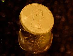 1988 1oz Canadian Gold Maple Leaf for #MacroMondays #Queen (Argentarius85) Tags: nikond5300 sigma105mmf28exdgoshsm macromondays queen canadiangoldmapleleaf queenelizabeth gold edelmetall preciousmetals intentionalblur motionblur reflections reflexionen spiegelung bokeh motion bewegung königinvonengland farben colours